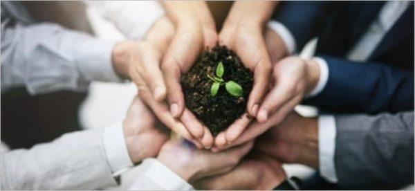 Società Benefit e le B Corp: la Responsabilità sociale in pratica